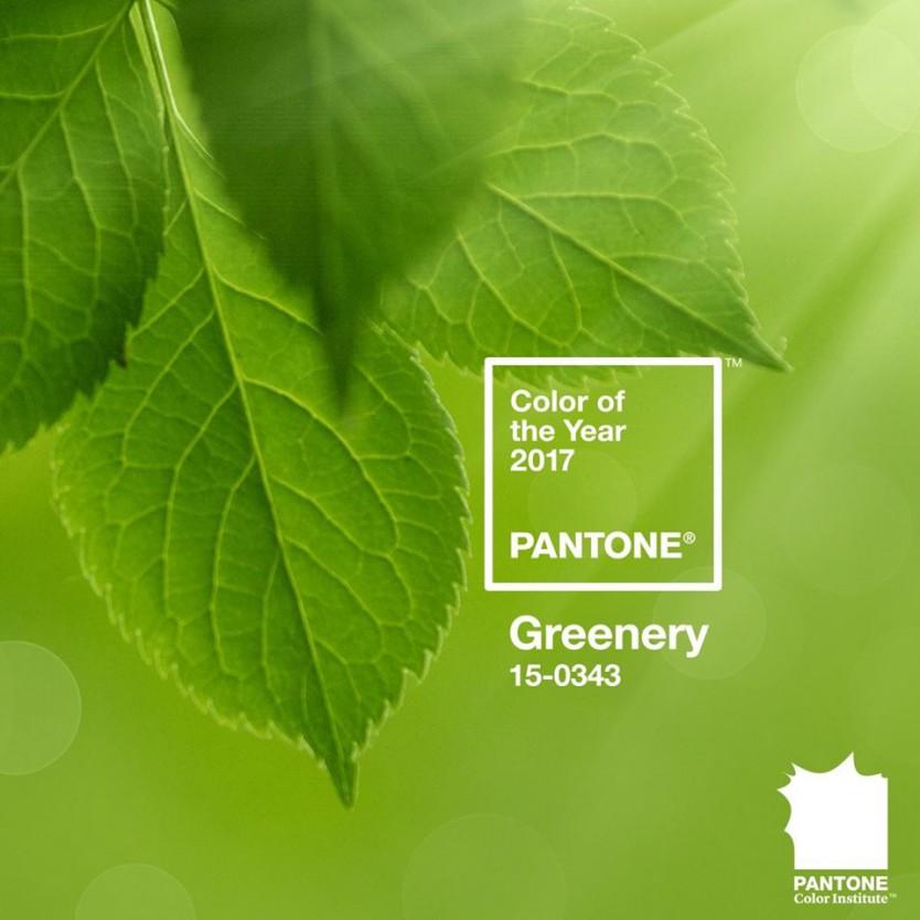 Цвет 2017 года по версии Pantone (в одной картинке)